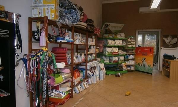 vendita fondo commerciale a Massa